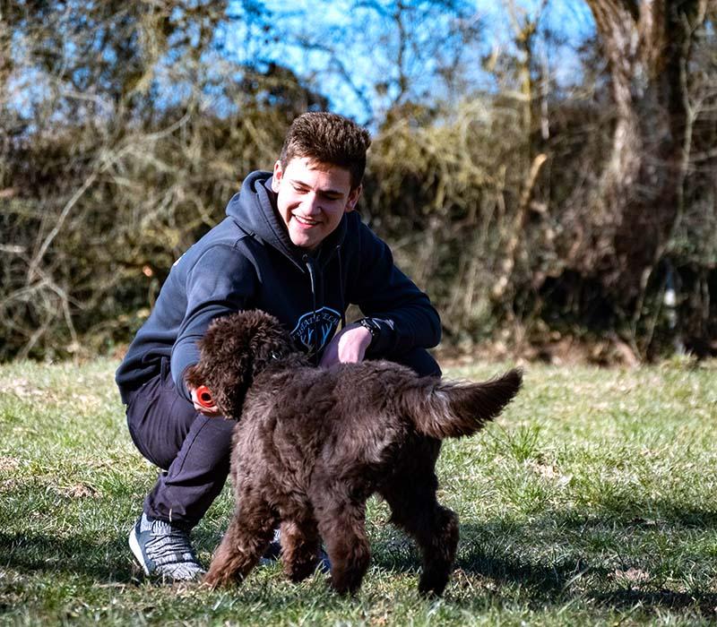 hundeschule-susanne-kohler-bühlerzell - ein fröhlicher junger mann spielt mit seinem hund auf einer waldwiese